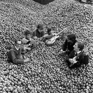 "Practically submerged in fruit, ""The Applejacks"", one of Britain's top pop groups, manage to maintain the beat during a visit to the world's largest cider factory at Hereford. Left to right: Gerry Freeman, drummer; Phil Cash; Al Jackson; Megan Davies, bass player who recently married Gerry Freeman; Don Gould and Martin Baggott."